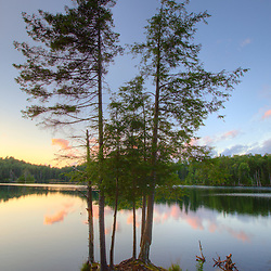 Spruce trees at sunset on the shore of Zack Woods Pond in Hyde Park, Vermont.  HDR. Green River Reservoir State Park