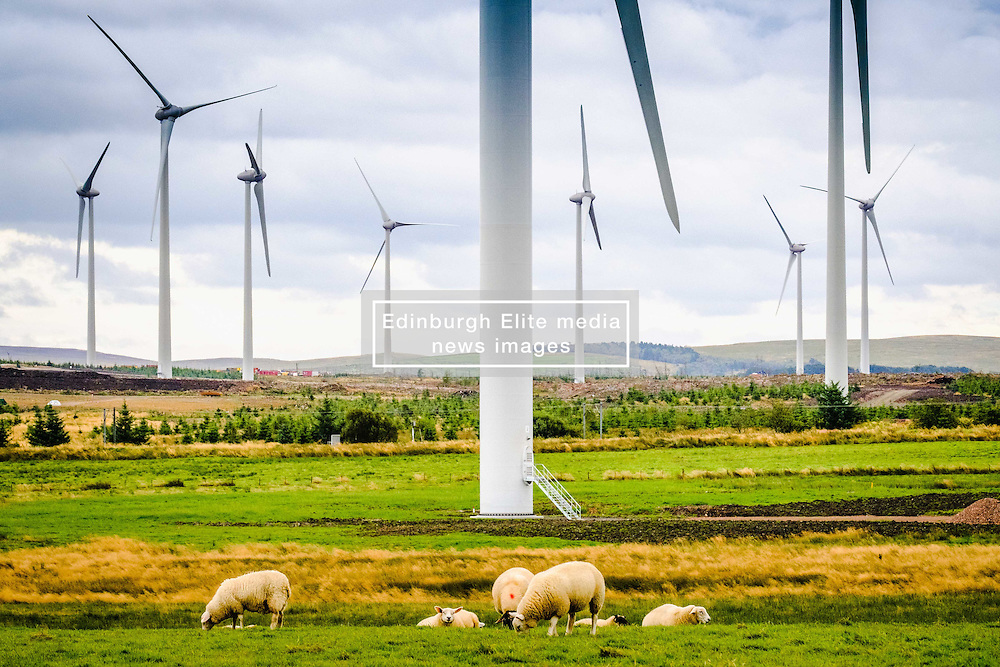 Wind Turbine in West Lothian, Scotland<br /> <br /> (c) Andrew Wilson | Edinburgh Elite media
