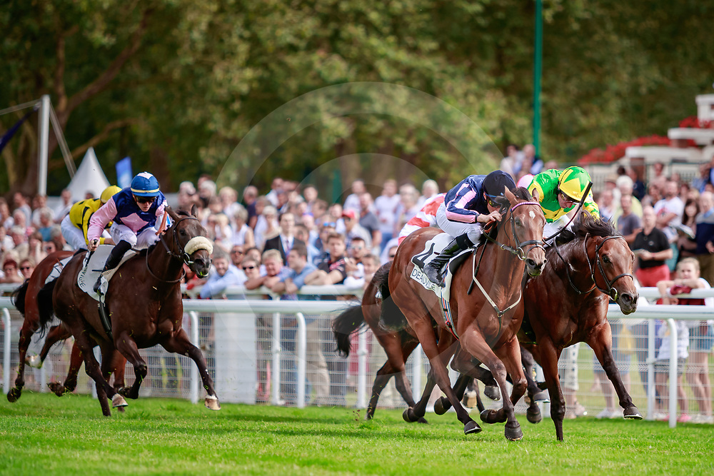 Queen of Bermuda (W. Buick) wins Prix de la Vallee d'Auge Listed in Deauville, France  15/08/2018, photo: Zuzanna Lupa