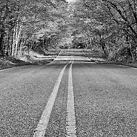 """""""Double Yellow"""" B&W<br /> <br /> Follow the double yellow lines in this monochrome image of a scenic rural Michigan country road!!<br /> <br /> Black and White images by Rachel Cohen"""