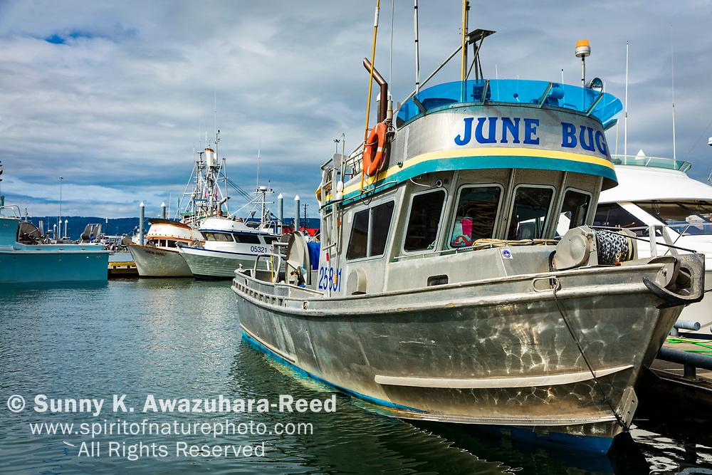"Commercial fishing boat ""June Bug"" moored at Homer Boat Harbor, Homer Spit, Homer, Kenai Peninsula, Southcentral Alaska, Summer."