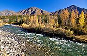 Alaska. Fall scene at Granite Creek along the Parks Highway.