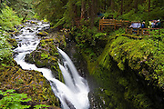 Hikers overlook the dramatic Sol Duc Falls in Olympic National Park, Washington.