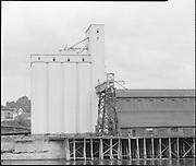 "Ackroyd 07126-4 ""Leval Mickelson. Cargill Grain elevators. September 10, 1956"" (Balfour, Guthrie & Co., Bunge Grain, Permanente Cement dock, Cargill Irving grain elevator, ECSI # 5561, 800 N. River St.)"