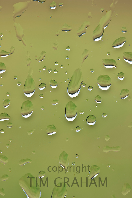 Raindrops on glass