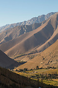 Vineyard in valley in mountain area, Elqui Valley, Chile