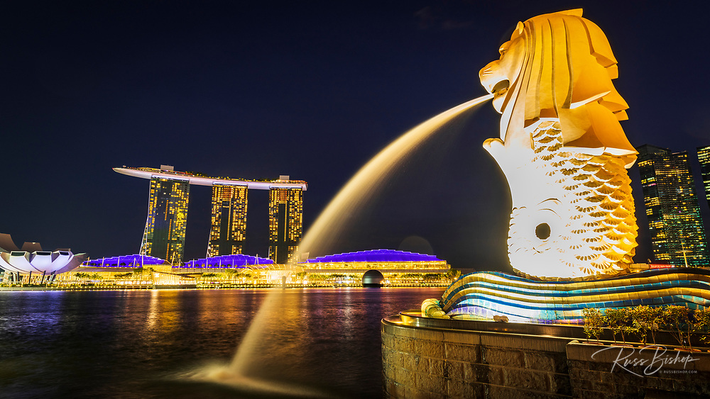 Merlion fountain and Marina Bay Sands at night, Singapore, Republic of Singapore