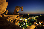 = gargoyls overlooking paris at night, Chimera gallery of Notre dame cathedral and the Seine river.   Paris  France +