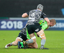 Northampton Saints' Mike Haywood is tackled by Ospreys' Dan Lydiate<br /> <br /> Photographer Simon King/Replay Images<br /> <br /> EPCR Champions Cup Round 4 - Ospreys v Northampton Saints - Sunday 17th December 2017 - Parc y Scarlets - Llanelli<br /> <br /> World Copyright © 2017 Replay Images. All rights reserved. info@replayimages.co.uk - www.replayimages.co.uk