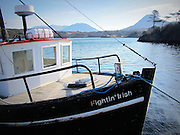 Connemara Boat. Flghtin' Irish