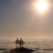 Sun setting over tundra and a couple of lone trees near Churchill, Manitoba. Canada.