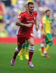 Cardiff City's Anthony Pilkington - Photo mandatory by-line: Alex James/JMP - Mobile: 07966 386802 30/08/2014 - SPORT - FOOTBALL - Cardiff - Cardiff City stadium - Cardiff City  v Norwich City - Barclays Premier League