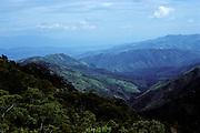 Coffee bean country landscape - San Pedro Sula, Honduras.