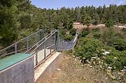 Israel, Carmel Mountain, a 70 meter suspension bridge in the Nesher Park