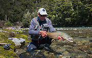 Buck Brown, Rangitikei River, NZ