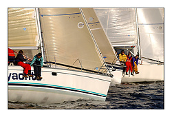 Yachting- The start of the Bell Lawrie Scottish series 2002 at Gourock racing overnight to Tarbert Loch Fyne where racing continues over the weekend.<br /><br />2 Sassy IRL3702 a sunfast 37 rolling over the class 3  start.<br /><br />Pics Marc Turner / PFM