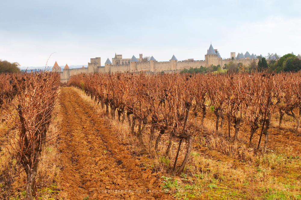 Carcassonne. Languedoc. View over the old city. A rainy and misty winter day. France. Europe. Vineyard.