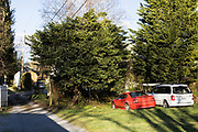 Alleyway, Tree Streets