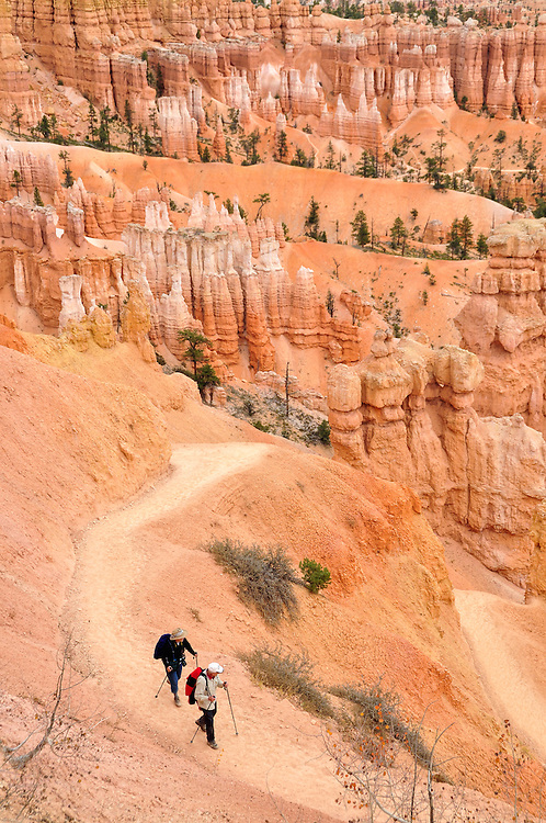 Hikers on the Navajo Loop Trail in Utah's Bryce Canyon National Park.