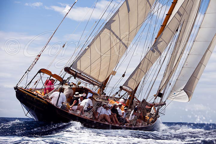 When and If sailing in the Cannon Race at the Antigua Classic Yacht Regatta.