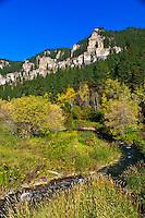Spearfish Canyon, near Deadwood, Black Hills, South Dakota USA