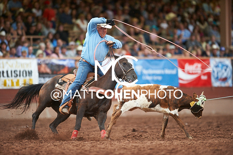 Team roper Matt Wilken of Smithfield, NE competes at the Pikes Peak or Bust Rodeo in Colorado Springs, CO.<br /> <br /> <br /> UNEDITED LOW-RES PREVIEW<br /> <br /> <br /> File shown may be an unedited low resolution version used as a proof only. All prints are 100% guaranteed for quality. Sizes 8x10+ come with a version for personal social media. I am currently not selling downloads for commercial/brand use.