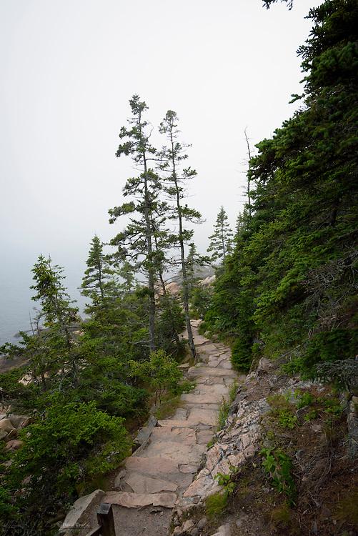 Rugged trail leading to the Atlantic Ocean, coastal Mount Desert Island, Maine, USA.