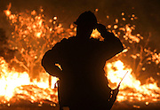 A firefighter watches the Blue Cut wildfire burning near Cajon Pass, north of San Bernardino, Calif., August 16, 2016. The fire is currently 9,000 plus acres, with 700 personnel on scene. Fifty-seven engines, 8 crews, 8 air tankers, 2 Very Large Air Tankers (VLATS), with additional firefighters and equipment on order. There is imminent threat to public safety, rail traffic and structures. With this being a very quickly growing wildfire, evacuation instructions have been issued. An estimated 34,500 homes and 82,640 people are being affected by the evacuation warnings.  AFP PHOTO / Ringo Chiu