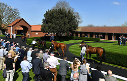 A general view of horses in the pre-parade ring prior to the Weatherbys General Stud Book Handicap during day two of The Bet365 Craven Meeting at Newmarket Racecourse. PRESS ASSOCIATION Photo. Picture date: Wednesday April 18, 2018. See PA story RACING Newmarket. Photo credit should read: Joe Giddens/PA Wire