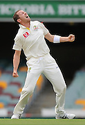 BRISBANE, AUSTRALIA - NOVEMBER 11:  Peter Siddle of Australia celebrates after taking the wicket of Hashim Amla of South Africa during day three of the First Test match between Australia and South Africa at The Gabba on November 11, 2012 in Brisbane, Australia.  (Photo by Matt Roberts/Getty Images)