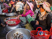 25 FEBRUARY 2015 - PHNOM PENH, CAMBODIA: Women sell fresh fish in a market in Phnom Penh.     PHOTO BY JACK KURTZ