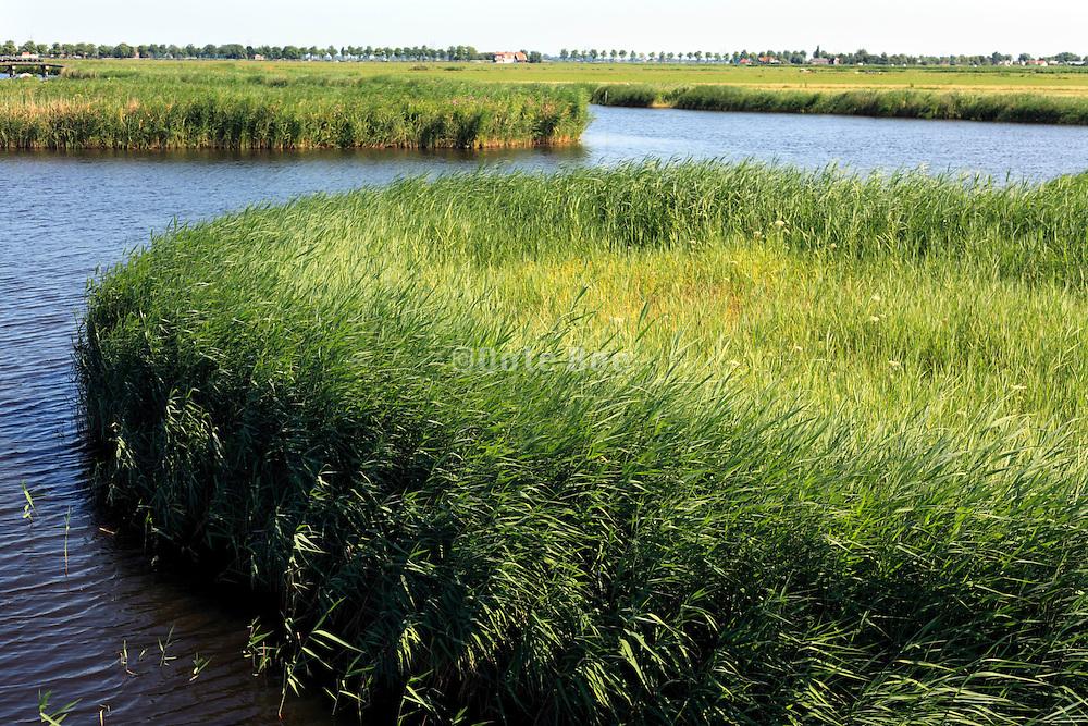 Dutch polder landscape North of amsterdam