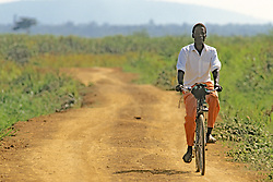 Man Riding Bicyle