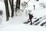 Woman clears driveway snow with a leaf blower.