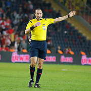 Referee Jonas Eriksson during their UEFA Euro 2016 qualification Group A soccer match Turkey betwen Czech Republic at Sukru Saracoglu stadium in Istanbul October 10, 2014. Photo by Aykut AKICI/TURKPIX