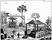 Slave labour on a sugar plantation in the West Indies. From P Pomet' A Compleat History of Drugs', 1725. Cane taken to vertical crushing mill powered by oxen. Juice extracted flows to boiling house where liquid boiled and refined. Engraving