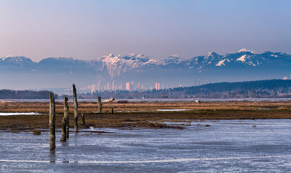 The tide marsh at Crescent Beach (Blackie Spit) with the skyline of Burnaby and the North Shore Mountains in the background.  Mountains (L to R) include Mount Strachan, Unnecessary Mountain, The Lions, Brunswick Mountain, Cobug Peak, Beauty Peak, Dam Mountain, Goat Mountain and Mount Fromme.   The ski area on the right is Grouse Mountain.  Photographed from Blackie Spit in Surrey, British Columbia, Canada.
