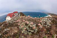 Point Sur Light Station
