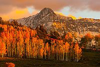 Autumn color, the Sneffels Range along the Dallas Divide, near Ridgway, Colorado USA.