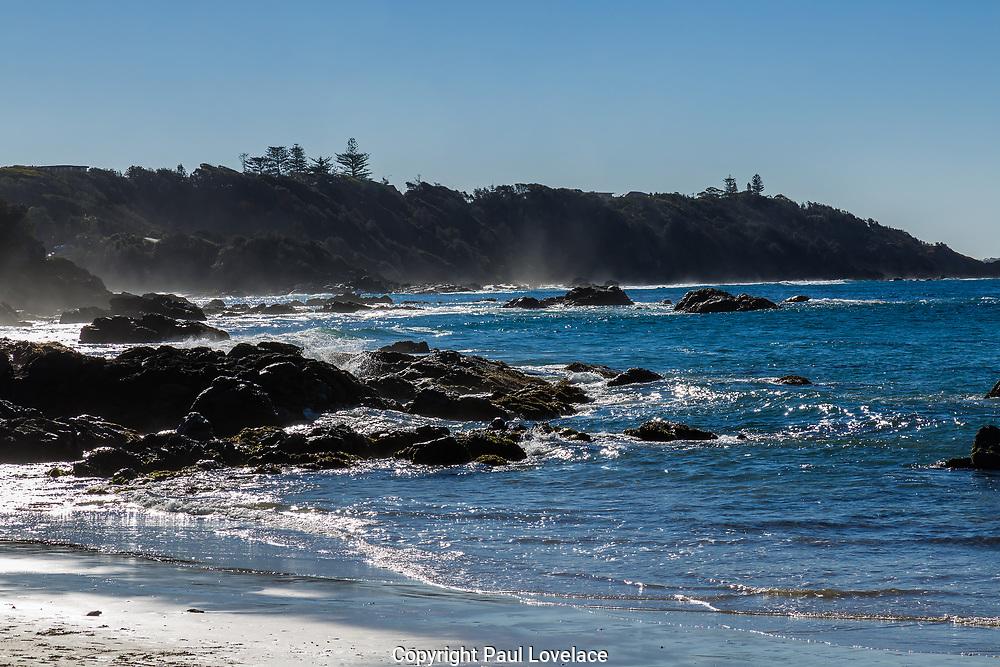 Nobbys Beach, Port Macquarie, a local dog friendly beach.
