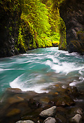 "The Quinault River is a 69-mile (111 km) long river located on the Olympic Peninsula in the U.S. state of Washington. It originates deep in the Olympic Mountains in the Olympic National Park. It flows southwest through the ""Enchanted Valley""."
