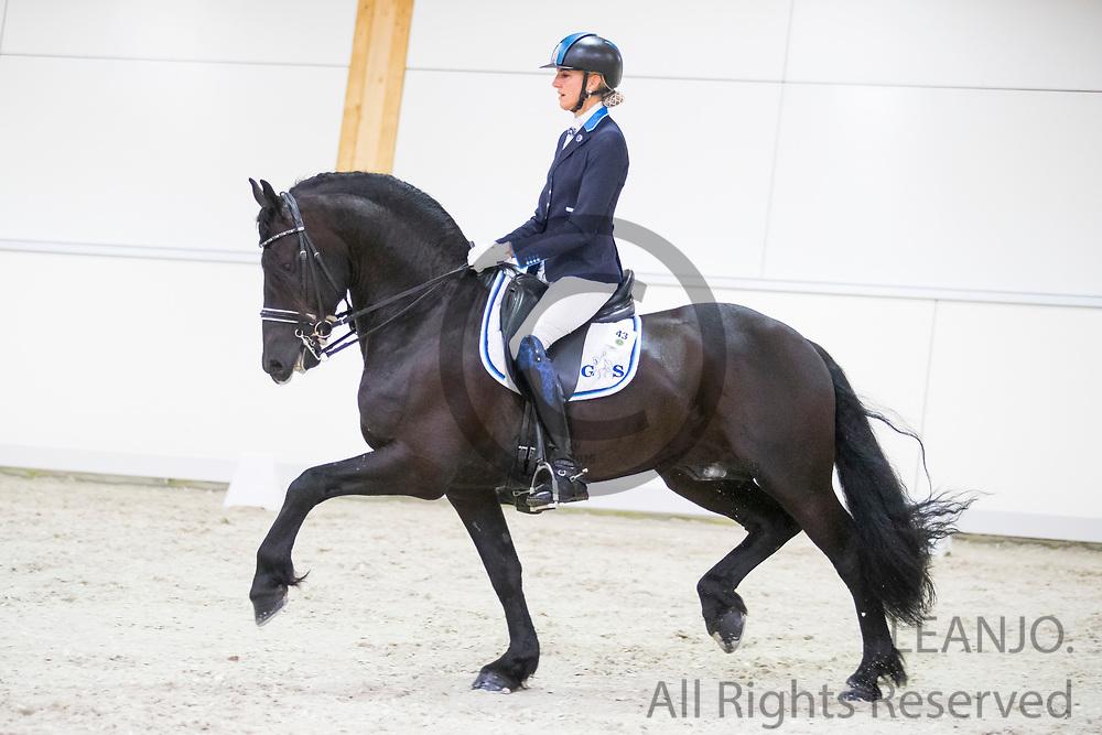Yvonne Snieder - Mersken's Kyan<br /> Europees Kampioenschap Jonge Paarden 2017<br /> © DigiShots
