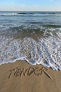 Tender, Egypt Beach, East Hampton, Long Island, NY