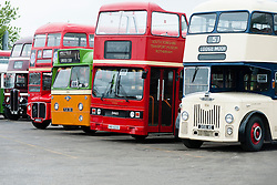 Just a few of the Vintage buses which could be found at the Olive Grove Bus bus depot open day on Saturday..12 May 2013.Image © Paul David Drabble