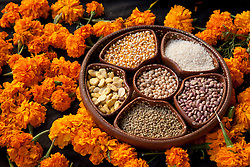 North America, Mexico, San Miguel de Allende, beans, seeds, and marigolds at altar for Day of the Dead celebration, also known as Dios de los Muertos.  Mexicans celebrate the Day of the Dead on November 1st and 2nd in connection with the Catholic holy days of All Saints' Day and All Souls' Day.