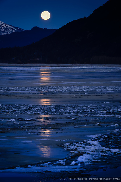 A full moon sets above the partially frozen Chilkat River near Haines, Alaska. During late fall, bald eagles congregate along the Chilkat River to feed on salmon. This gathering of bald eagles in the Alaska Chilkat Bald Eagle Preserve is believed to be one of the largest gatherings of bald eagles in the world.