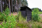 Kaszubski las w okolicach miejscowości Wdzydze Kiszewskie, leśna toaleta.