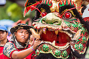 """05 JULY 2014 - BANGKOK, THAILAND: A man holds the head of a Chinese style dragon dancer on a side street in Bangkok during a parade for vassa. Vassa, called """"phansa"""" in Thai, marks the beginning of the three months long Buddhist rains retreat when monks and novices stay in the temple for periods of intense meditation. Vassa officially starts July 11 but temples across Bangkok are holding events to mark the holiday all week.    PHOTO BY JACK KURTZ"""