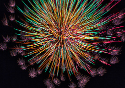 A Vibrant Multi-Colored Firework Explosion in the Night Sky