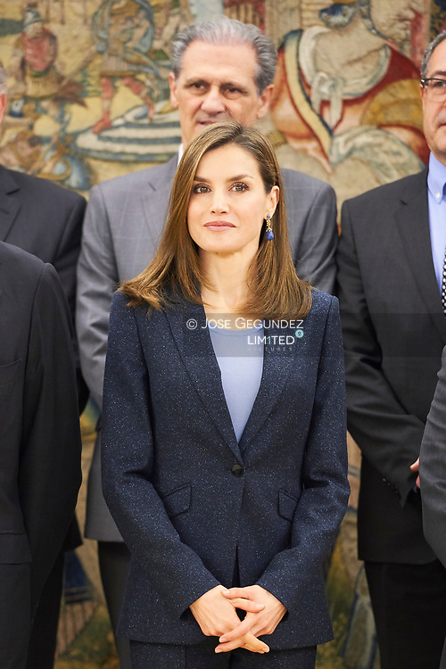 """Queen Letizia of Spain attends an Audience to the Board of Trustees of the Direct Line Foundation and to the Jury and Committee of Experts that grant the """"Journalistic Prize of Road Safety"""" at Zarzuela Palace on March 16, 2017 in Madrid"""